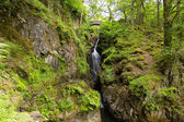Aira Force waterfall Ullswater Valley Lake District Cumbria England UK in beautiful woodland with bridge — Stock Photo