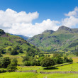 Langdale Valley Lake District Cumbria England UK with blue sky on beautiful summer day — Stock Photo #51525243