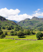 Langdale Valley Lake District Cumbria England UK with blue sky on beautiful summer day — Stock Photo
