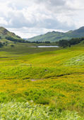 Blea Tarn Lake District Cumbria England UK between Great Langdale and Little Langdale — Stock Photo
