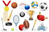 Sports Icon — Stock Vector