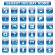 Glossy Holiday Button — Stock Vector