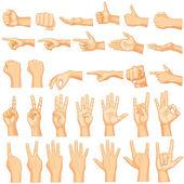 Hand Gestures — Stock Vector