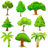 Collection of Tree — Stock Vector