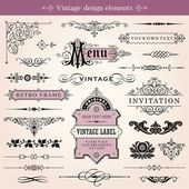 Vintage Calligraphic Design Elements And Page Decoration — Stock Vector