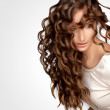 Curly Hair. High quality image. — Foto de Stock   #22497403