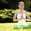 Beautiful Woman doing Yoga Exercises in the Park. — Stock Photo