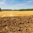 Landscape with partly ploughed field and stubble — Stock Photo #34268979