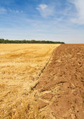 Rural scenery after harvest time — Stock Photo