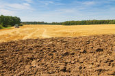 Landscape with partly ploughed field and stubble — Stock Photo