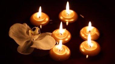 Velas flotantes y orquídea en oscuridad — Vídeo de stock