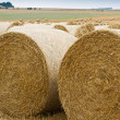 Bales of straw on stubble field — Stock Photo