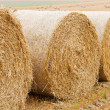 Bales of straw on stubble field — Stock Photo #34669001