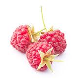Three raspberries on white — Stock Photo