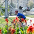 Man in blue uniform on the racing bike near Canna flowers - Stock Photo