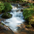 Mountain stream in Pirin nature park — Stock Photo