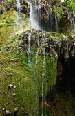 Krushuna waterfalls, Bulgaria — Stock Photo