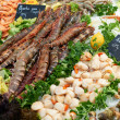 Fresh shrimps on fish market in France — Stock Photo #37623057