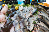 Fresh mediterranean fish on market in France — Stock Photo