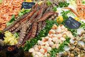 świeże krewetki na targ rybny w francji — Zdjęcie stockowe