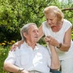 Elderly couple enjoying life together  — Stock Photo #50519821