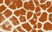 Colorful Animal skin textures of giraffe. Vector illustration wild pattern, eps 10 — Stock Vector