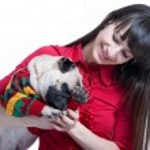 Girl playing with her pug dog — Stock Photo