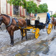 Two Horse carriage — Stock Photo #26183167