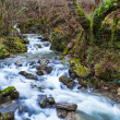 River flowing — Stock Photo