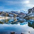Lake Ercina — Stock Photo