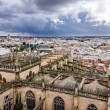 Seville Cathedral — 图库照片