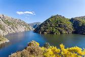 River Spain — Stock Photo