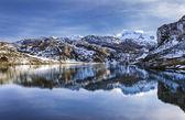 Lake Ercina — Stock Photo