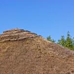 Palloza roof — Stock Photo #26190299