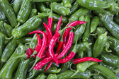 Group of Red an gree fresh peppers — Stock Photo