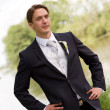 Stock Photo: Elegant groom