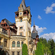 图库照片: Peles Castle in Sinaia