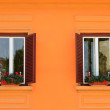 Two windows with flowers on wall — Stock Photo