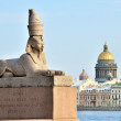 Royalty-Free Stock Photo: Sphinx in Saint Petersburg, Russia