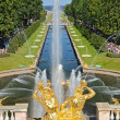 Grand Cascade Fountains in Peterhof — Stock Photo #13509427
