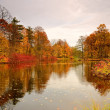 Stock Photo: Colorful autumn trees on lake