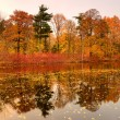 Colorful autumn trees on the lake - Stock Photo