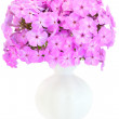 Bouquet of pink phlox in a ceramic vase - Stock Photo