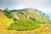 Transilvanya, sinaia, romanya — Stok fotoğraf