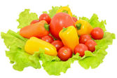 Peppers and tomatoes on lettuce leaves — Stock Photo
