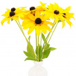 Stock Photo: Yellow rudbeckiflowers in ceramic vase