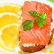 Sandwich with salmon, lemon slices and parsley — Stock Photo