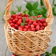 Stock Photo: Cowberries in basket