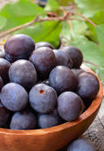 Plums in brown bowl — Stock Photo