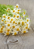 Chamomile flowers on table — Stock Photo